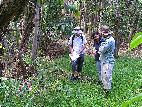 Consult with local Landcare